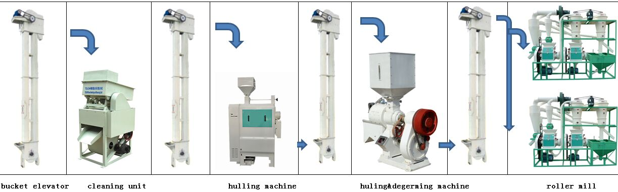 maize milling plant.jpg