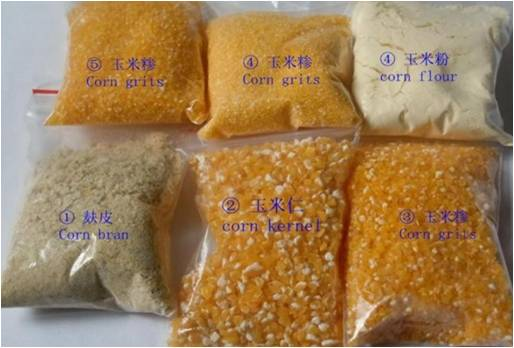 maize milling machinery for corn grits and flour.jpg