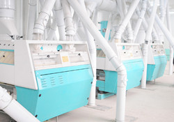 250T wheat flour mill machine.jpg